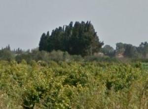 קרקע חקלאית באזור כרכור (מתוך Google Street View)